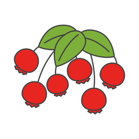 Cartoon Wild Berries with Leaves Illustration