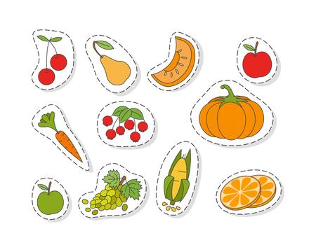 과일과 야채 플랫 벡터 스티커 세트 일러스트