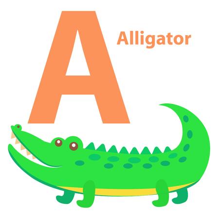 아이들을위한 알파벳 편지 앨리게이터 만화 일러스트