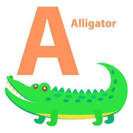 Alphabet for Children A letter Alligator Cartoon