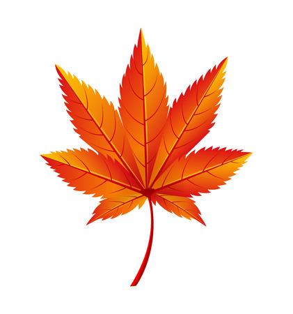 秋の黄金の黄色い葉ベクトルイラストアイコン  イラスト・ベクター素材