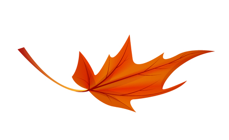 Autumn Golden Yellow Leaf Vector Illustration Icon
