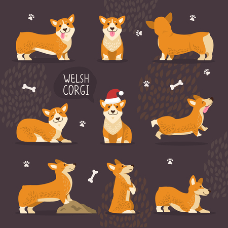 Adorable Welsh Corgi Dogs with Yellow Fur Set Vectores