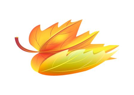 秋の黄金の黄色い葉ベクトルイラストアイコン 写真素材