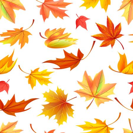 Modelo inconsútil con las hojas amarillas del otoño, proceso de envejecimiento, cambiando del concepto de la hoja. Ilustración de vector con arce naranja caído en diseño realista