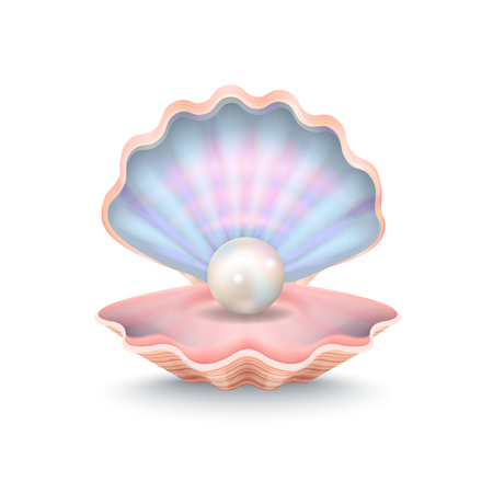 Closeup of Pearl and Shell Vector Illustration