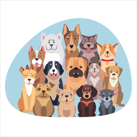 Concept of purebred dogs. Vector illustration of different type of dog.