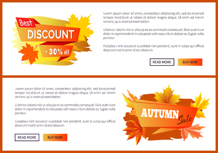 Discounts offer special price -30 off invitation vouchers on autumn big sale 2017, fall collection web banners with buttons read more, buy now vector