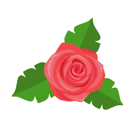 Rose Flower Green Leaves Vector Decorative Sticker