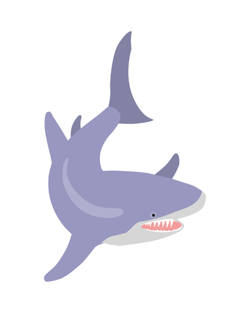 Great White Shark Cartoon Flat Vector Illustration 向量圖像
