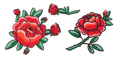 Closeup of Red Rose on Poster Vector Illustration