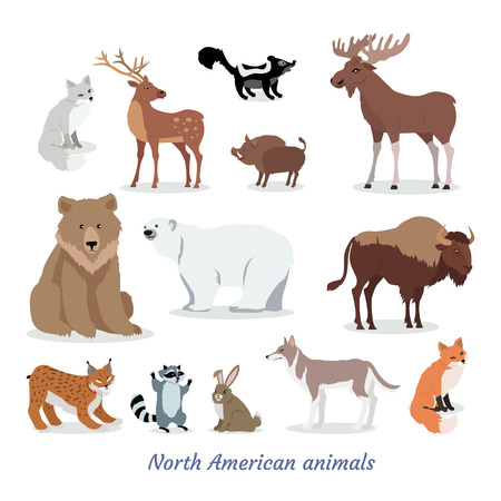 North American Animal Cartoon Flat Icons Set illustration.