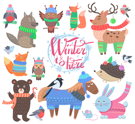 Winter is here poster with animals, icons of bullfinch, fox and wolf, owl and bird, horse and reindeer, rabbit and hedgehog vector illustration.