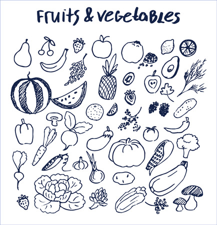 Fruits and vegetables collection of hand drawn elements written by ink pen on checkered sheet of paper from copybook vector illustration isolated food