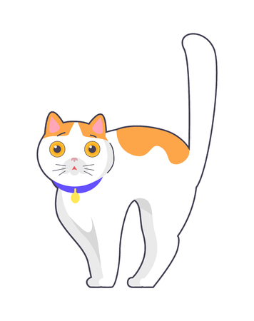 Cute Cat with Big Eyes Blue Collar on Neck Vector Stock Illustratie