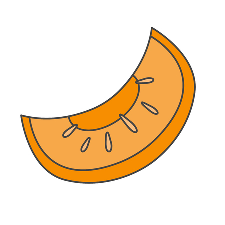 Slice of Ripe Melon Flat Vector Icon