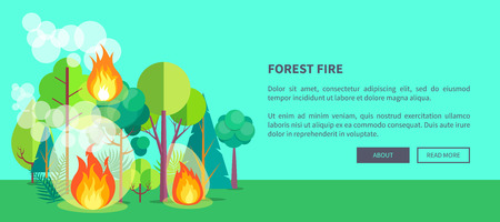 Forest fire web poster of raging wildfire. Vector illustration of forest burning fiercely with bushes. Illustration
