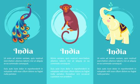 Animal Symbols of India on Set of Posters Vector illustration. Illustration