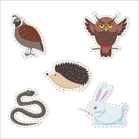 Cute forest animals stickers isolated on white background. Thick hazel grouse, brown owl, small hedgehog, fluffy rabbit and wriggling snake vector illustrations set. Cartoon funny creatures pictures. Illustration