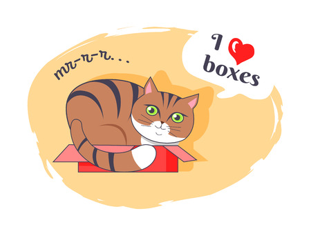 I love boxes beautiful kitty vector illustration of cat with black stripes and green eyes sitting in small pink box, isolated on white background Illustration