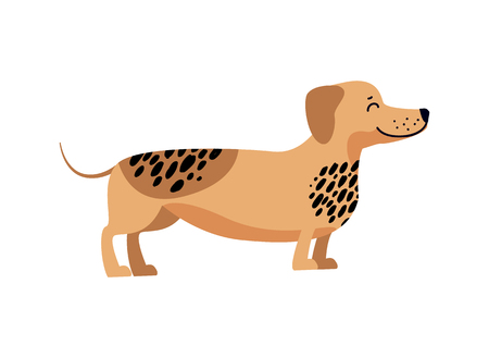 Dachshund Filled with Energy Vector Illustration