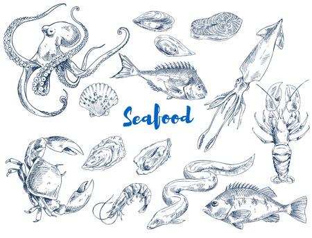 巨大なタコ、海のカニ、長いウナギ、キングエビ、インクイカ、新鮮なロブスター、おいしいサーモンや軟体動物のベクターイラストなどのエキゾ