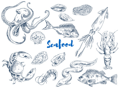 Exotic seafood such as huge octopus, ocean crab, long eel, king shrimp, ink squid, fresh lobster, tasty salmon and mollusks vector illustrations.