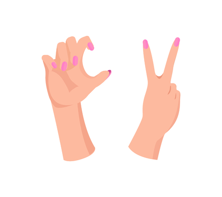 Pair of Girl s Hands With Beauty Pink Manicure Illustration