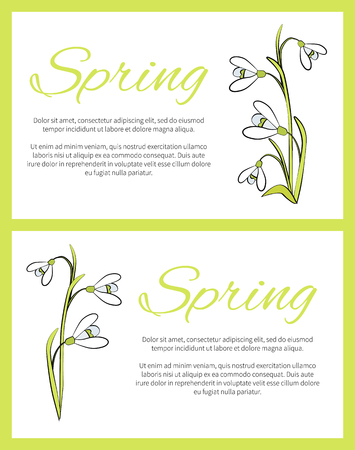 Spring Posters Set Green on Vector Illustration Иллюстрация