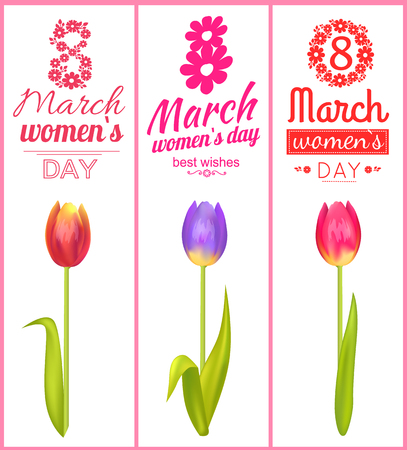 8 March Best Wishes Poster Vector Illustration
