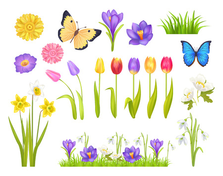 Flowers and Butterflies Set Vector Illustration