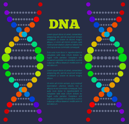 DNA colorful sign on poster with place for text, deoxyribonucleic DNA acid chain carrying genetic instructions used in functioning and reproduction vector 版權商用圖片 - 96600697