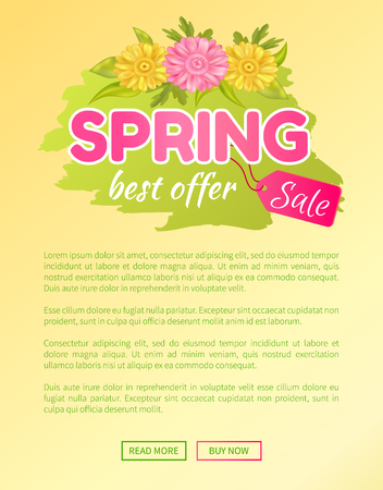 Best offer spring big sale advertisement daisy pink and yellow flowers vector illustration online web poster. Promo sticker with springtime blossoms