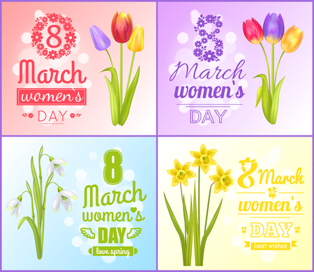 8 March womens day posters best wishes greeting cards set with tulips, snowdrops and yellow daffodil flowers vector illustration postcards on Womens day Zdjęcie Seryjne - 96601223