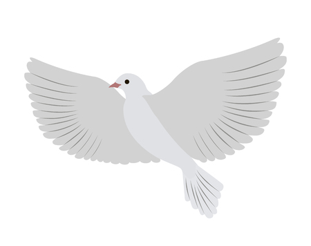 Gorgeous White Dove Flies and Spreads Large Wings Ilustração