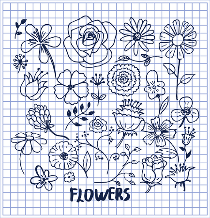 Set of hand drawn flowers vector illustration with cute black sketches of roses chamomiles lilys violets orchid aster poppies and other lovely flowers Banque d'images - 96707387