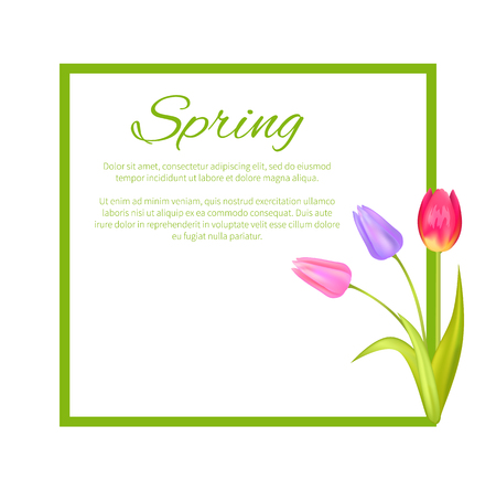 Spring Poster with Text in Frame Colorful Bouquet Ilustração