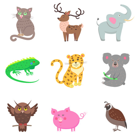 Vector illustration of brown owl and quail, pink pig, gray koala and elephant, spotty jaguar, green iguana, domestic cat and horned deer. Nine icons with animals for children in cartoon design.