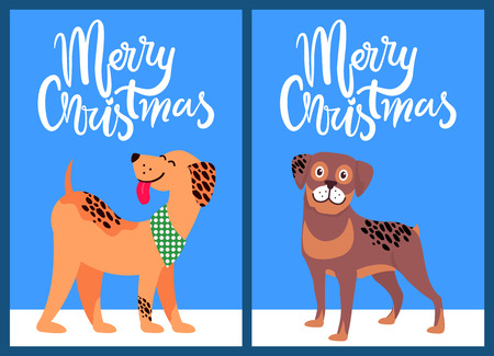 Merry Christmas Congratulation from Happy Pets Vector illustration.