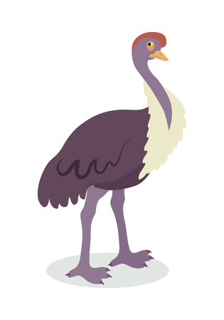 Ostrich Cartoon Flat Vector Illustration Çizim