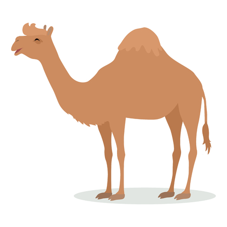 Dromedary Camel Cartoon Icon in Flat Design Illusztráció