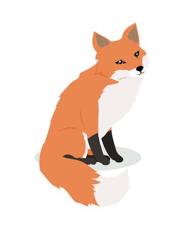 Fox Cartoon Vector Illustration in Flat Design Illustration