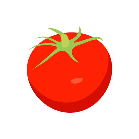 Bright Red Tomato Closeup Card Vector Illustration Illustration