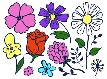 Flowers hand drawn elements set, flourishing rose and camomile, bluebonnet and dog-violet, leaves of plants, isolated on vector illustration