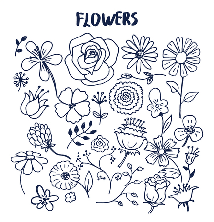 Set of hand drawn flowers vector illustration with cute black sketches of roses chamomiles lilys violets orchid aster poppies and other lovely flowers
