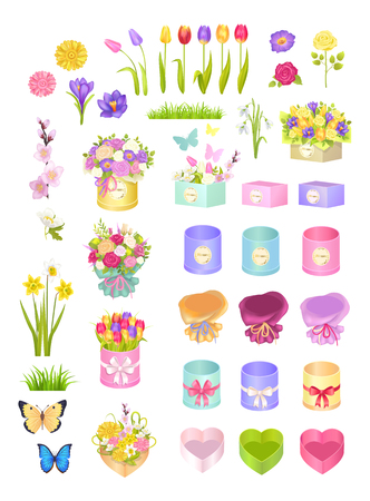 Boxes and Flowers, Collection Vector Illustration