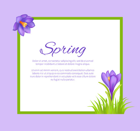 Spring Poster with Text in Frame Colorful Bouquet Illustration