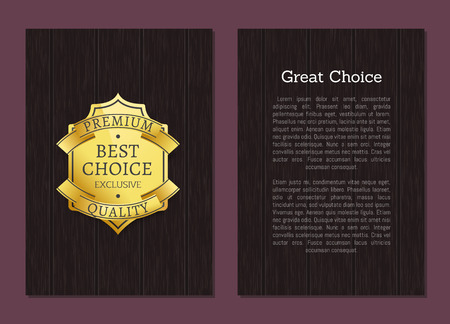 Great Choice Exclusive Premium Quality Gold Label Stock Vector - 101734025