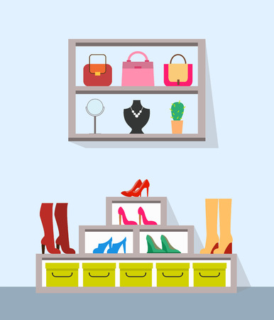 Shelves with Handbags Jewelry and Varied Footwear