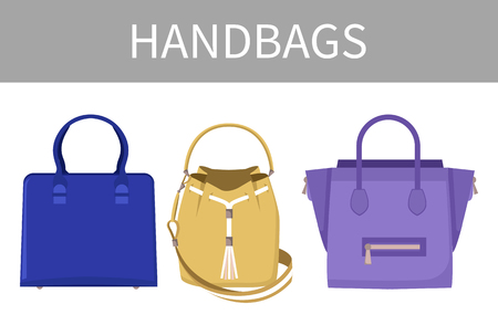 Set of Varied Handbags Color Vector Illustration  イラスト・ベクター素材
